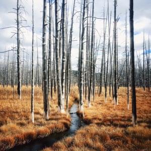 Exploring the streams of Yellowstone