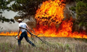 Man fights forest fire