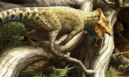 The horned dinosaur Aquilops