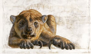 A marsupial lion, Thylacoleo carnifex.