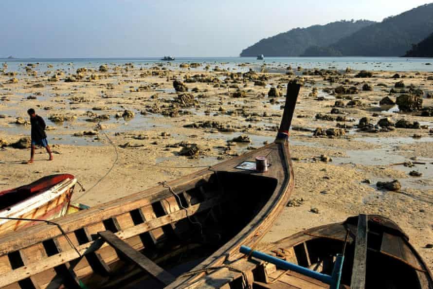 Devastated beach
