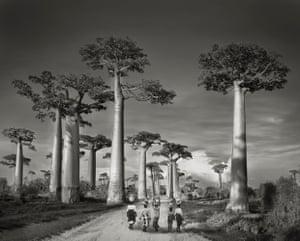 Off to Market, Madagascar, 2006