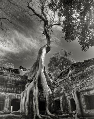 Rilke's Bayon, Cambodia, 2007.