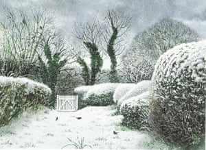 David Gentleman's illustration of Huntingfield Cottage Garden.