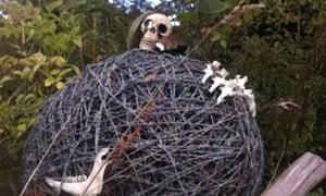 Skulls and wire on Dartmoor