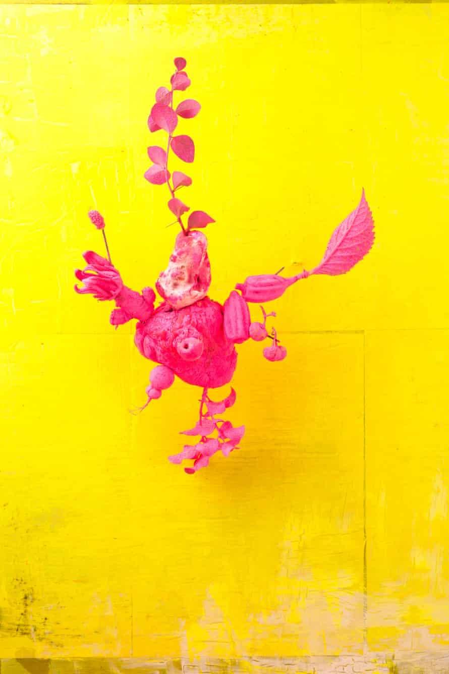 Lorenzo Vitturi, Shocking Pink Heart, from the series Dalston Anatomy, 2013.