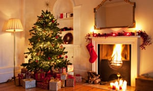 Fir real: how much should you spend on a Christmas tree? | Life ...