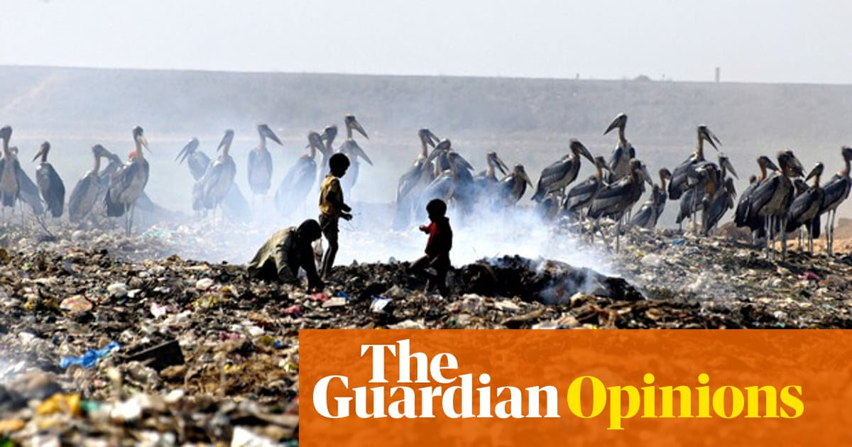 Five ways to stop mass extinction   Miles King   Opinion