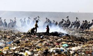 Birds and children scavenge in a rubbish dump in Guwahati