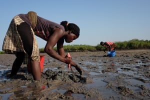 Tania Antonio Eugenio Carunbe digs in the mud