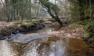 The Highland Water, rushing on its way through the New Forest, Hampshire.