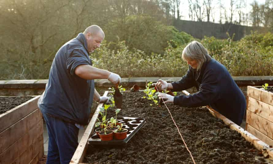 Gardening Leave, one of the charities for this year's Guardian and Observer christmas appeal, uses horticultural therapy to support troubled veterans on their journey to good health.