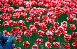 A volunteer removes the ceramic poppies from the Blood Swept Lands and Seas of Red installation at the Tower of London.