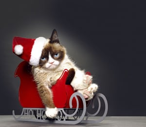 Grumpy Cat owes her permanent frown to a medical condition.