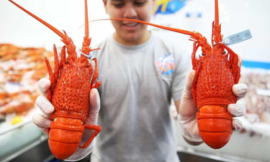 A Fishmonger prepares fresh festive seafood supplies at the Sydney Fish Market on December 23, 2014 in Sydney, Australia.