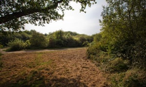 Lodge Hill, in Medway, Kent, a Site of Special Scientific Interest.
