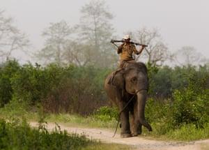 Anti poaching patrol, Kaziranga national park, Assam, India.