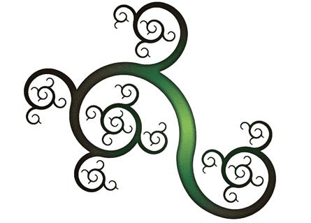 Harriss spiral