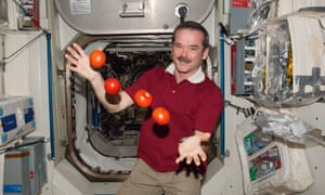 'Try to be nice' ... Expedition 34 Flight Engineer Chris Hadfield with floating tomatoes on the International Space Station in 2013.