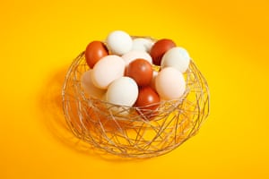 Bliss In The Woods Bird Nest Egg Basket All your eggs in one basket, £25