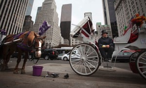 New York horse carriages