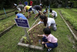 South Korean students from Seoul Foreign School prepare vegetable beds at Yaowawit with the students