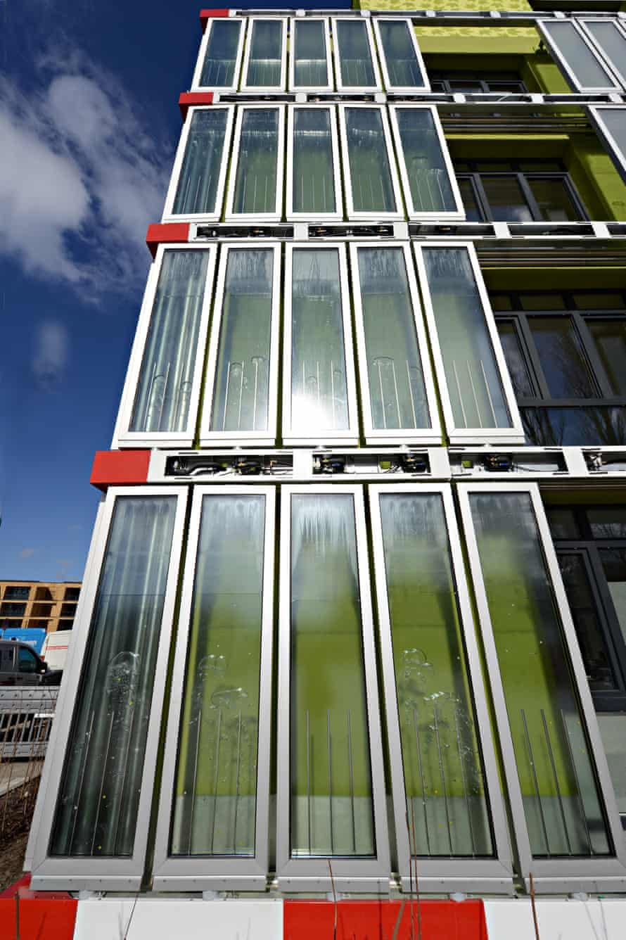 The BIQ house in hamburg, with photobioreactor facade.