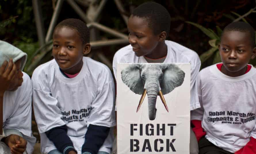 "Young demonstrators sit with a placard as they prepare to take part in the ""Global March for Elephants and Rhinos"" to raise awareness Nairobi, Kenya Saturday, Oct. 4, 2014."