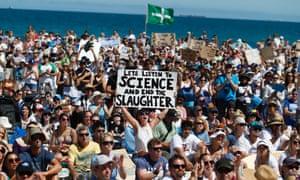 Protesters shark cull Perth