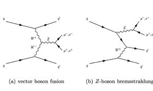 Some Feynman diagrams for Z+jets