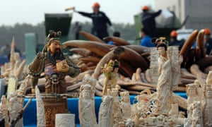 Workers destroy confiscated ivory in China last month.