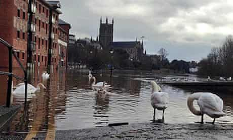 Swans enjoy the extra water in South Parade in Worcester