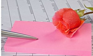 A rose, notepad and pen on a spreadsheet