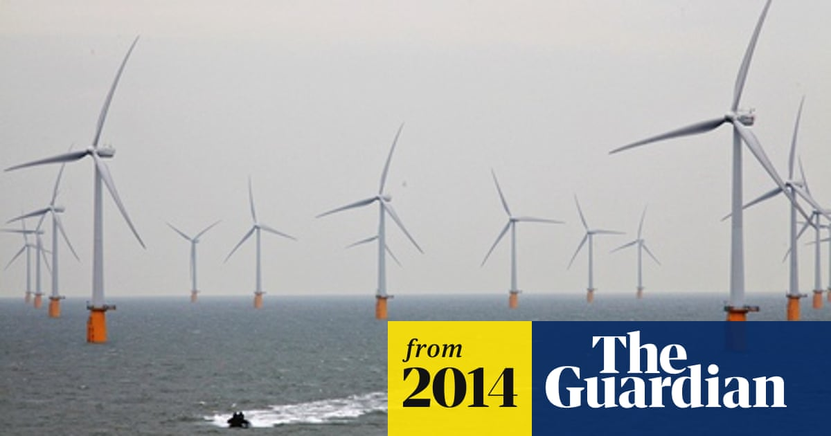Offshore windfarms 'wild west' of renewable energy, union