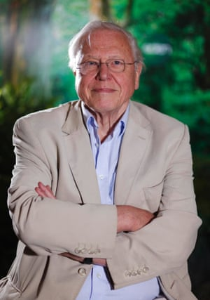 """""""David Attenborough. His observations on life spread a much needed sense of wonderment and he has been going strong, doing what he loves, well into his eighties, sustainably."""""""