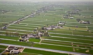 Netherlands, Kamerik, Farms in polder. Aerial