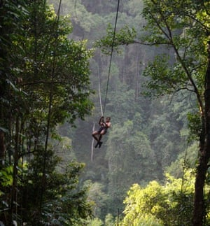 World's best hotels: The Gibbon Experience Treehouse, Bokeo Reserve, Laos