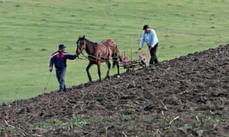Peasant farmers near Ploiesti, Romania