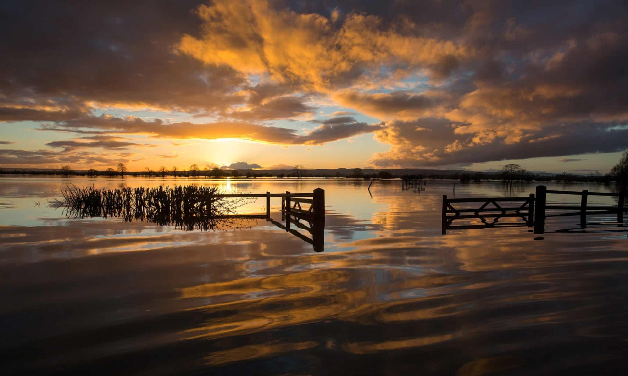 Flooded landscape: the Somerset Levels, in pictures