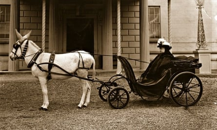 Queen Victoria and a donkey
