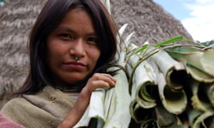 A Matsigenka woman in south-east Peru where the Camisea gas project is taking place.
