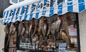 Village butcher's window display with pheasant hanging outside.