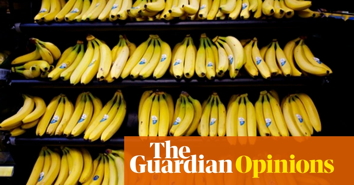 Just how much does it cost growers to give us bananas at 68p