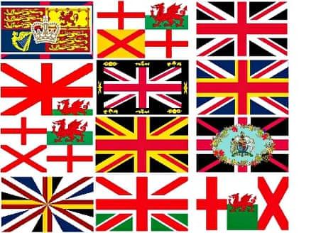 Flag Insitute's designs.