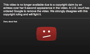 The takedown notice on YouTube.
