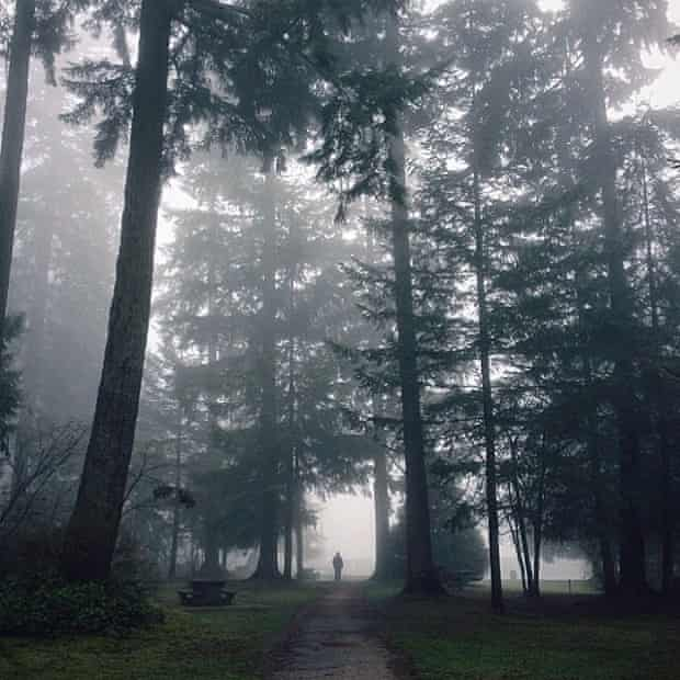 Instagram: Vancouver Central Park