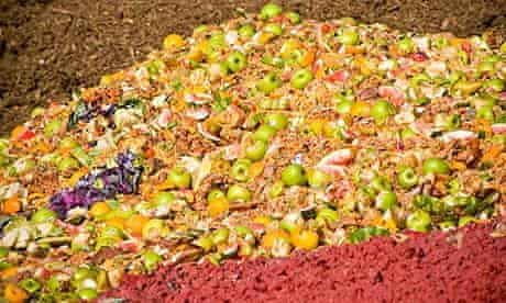 Food waste to be composted