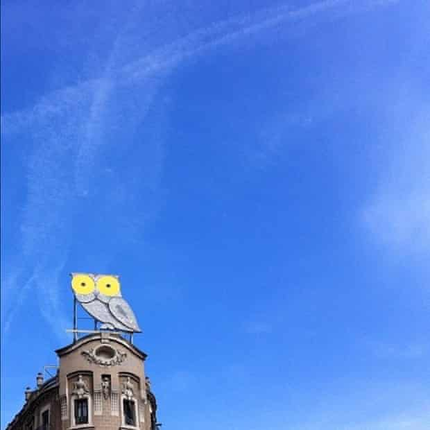 Instagram: owl sign in Barcelona