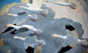 Wildfowl & Wetlands Trust's Bewick's swan studies at Slimbridge by Peter Scott's 50th 'swanniversary'