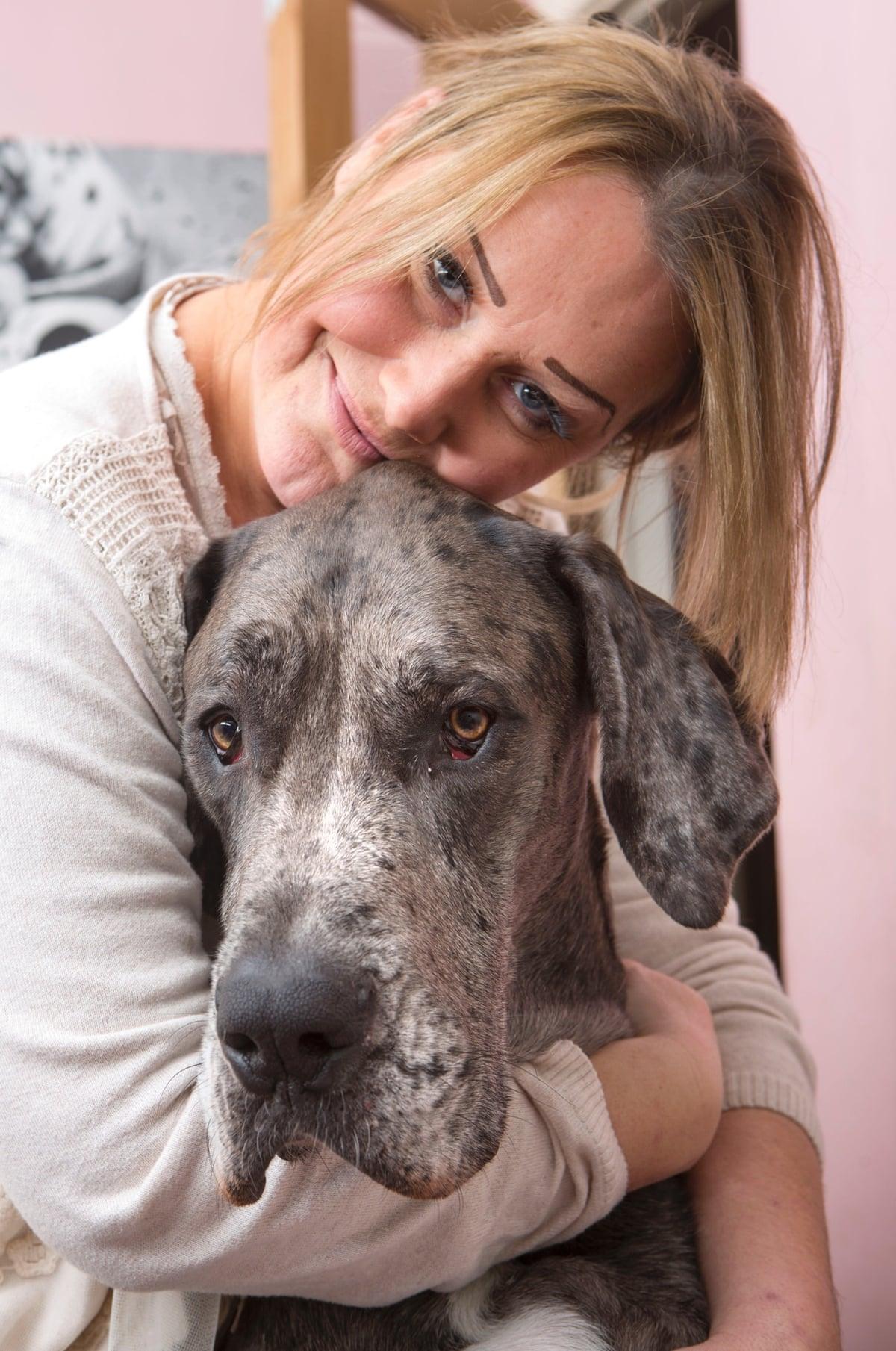 Freddy, Britain's biggest dog in pictures | Life and style ...